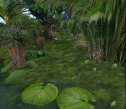 Zonama Sekot Jungle