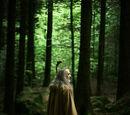 Druid z Lasu Łaknienia