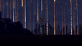 Kimmy Mysner walking under a meteor shower in Lessons in Love.png