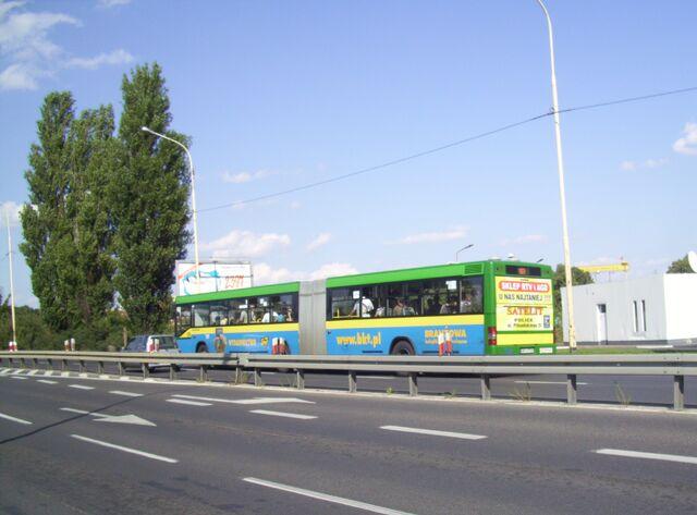 Plik:Szczecin w sierpniu (48).jpg