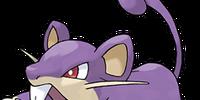 Rattata (Pokémon)