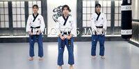 Palgwae Yook Jang