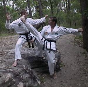 ITF Twisting Kick