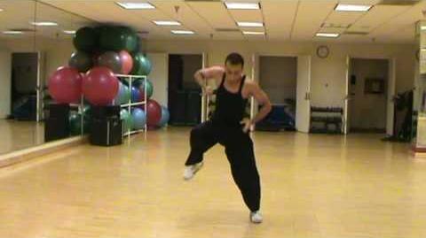 Tang Soo Do Form - Rohai