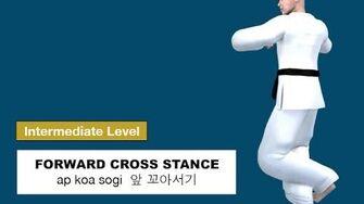 Taekwondo 2D - Forward Cross Stance ( 앞 꼬아서기 ap koa sogi )