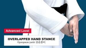 Taekwondo 2D - Overlapped Hand Posture ( 겹손준비 Gyeopson-junbi )