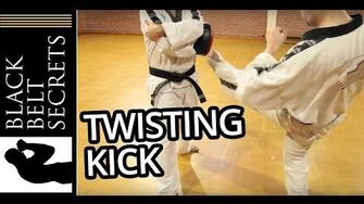 Twisting Kick (Bituro Chagi)-0