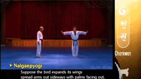 Grand Master Kyu Hyung Lee - WTF Poomsae Chonkwon