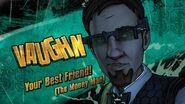Vaughn Smash Card