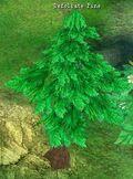 Defoilate Pine