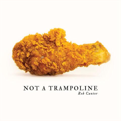 File:Not a trampoline.jpg