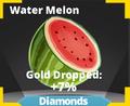 Water Melon Icon