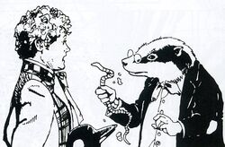 Badgers like worms