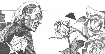 File:Roses.jpg