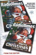 RT 2009 Christmas 1 twin covers