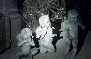 Infant Angels