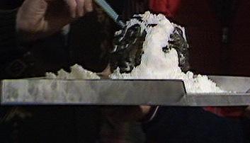 File:Seedsofdoom Frozen Krynoid pod.jpg