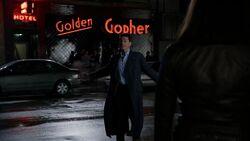 Golden Gopher (DON)