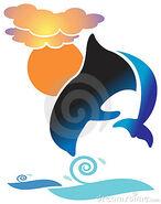 Dolphin-thumb15275068