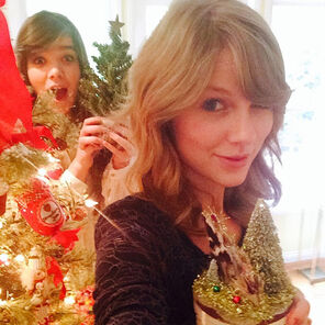 Steinfeld-and-Swift-Christmas-Tree