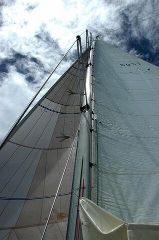 File:Sail 7.jpg