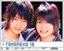 Tamaneko-froots10