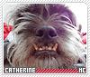 Catherine-animalia