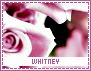 Whitney-dashes