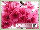Auriianna-elements1