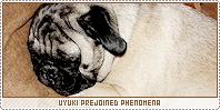 Uyuki-phenomena b