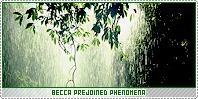 Becca1-phenomena b