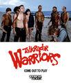 TDar Warriors