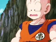 Krillin on the sidelines