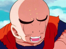 Krillin right before being punched