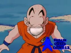 Krillin Owned Count 13