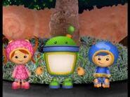 Team at a tree