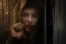 Abby in window