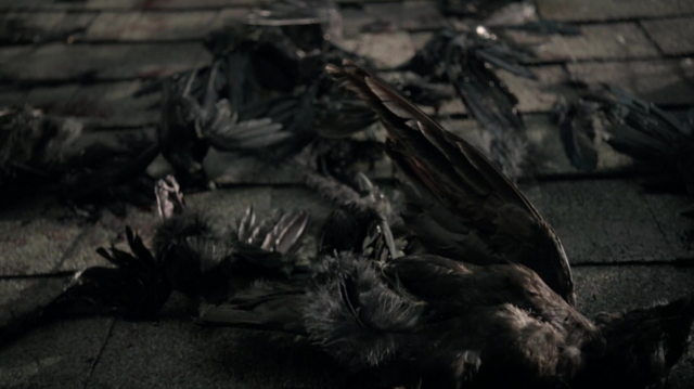 File:502DeadCrows.png