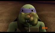 Donatello's Stung Face