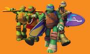 Turtles Surfing 2012