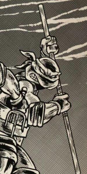 Mirage Donatello