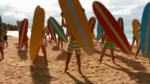 Surf Crazy (325)