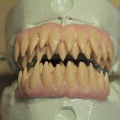 les dents du Kanima