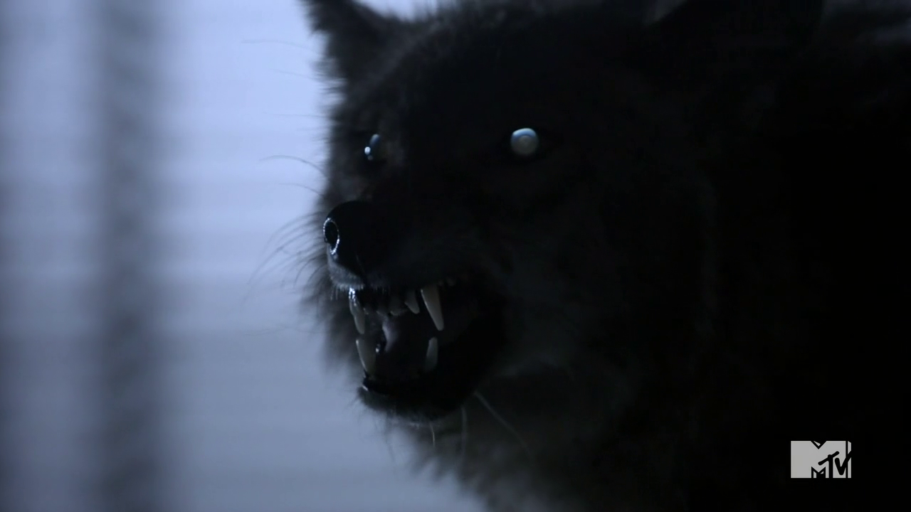 Datei:Teen Wolf Season 3 More Bad Than Good Werecoyote.png