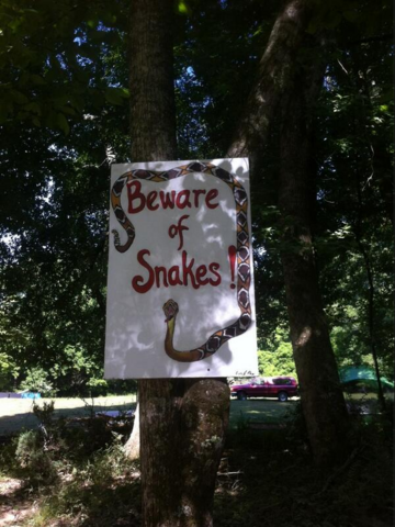 File:Maze Runner Behind the Scenes Beware of Snakes.png