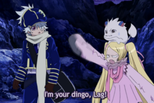 Lag-niche-dingo