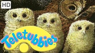 Teletubbies- Owl Babies - HD Video