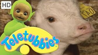 Teletubbies Our Calf Treacle - Full Episode