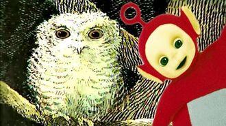 Teletubbies Owl Babies 113 Cartoons for Children