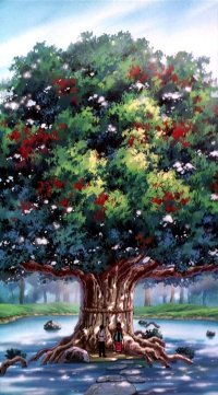 File:Funaho tree.jpg